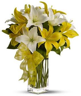 White & Yellow Lilies