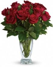 Rose Calssique