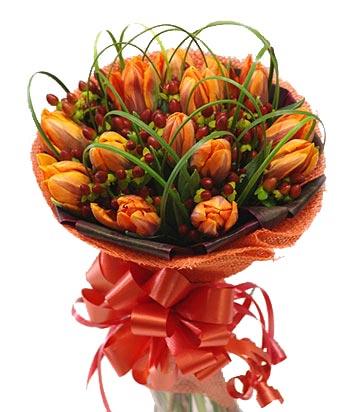 Gorgeous Orange Tulips