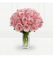 Pink Titanic Roses