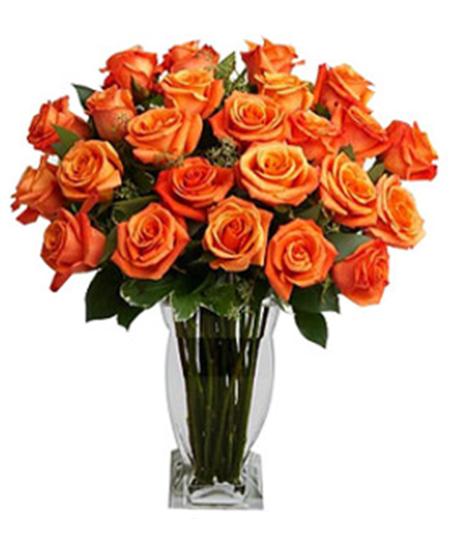 Opulent Orange Roses