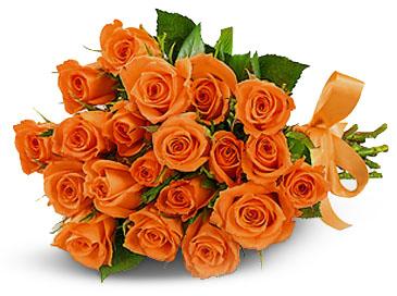 40 Orange Roses