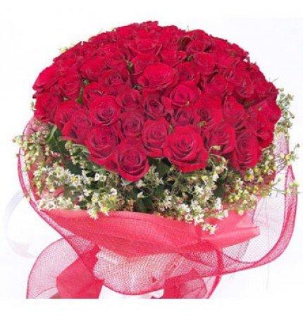 Roses in Net