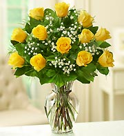 Premium Long Stemmed Yellow roses