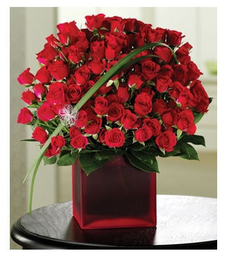 Roses N Rapture