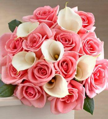 Soft blushes