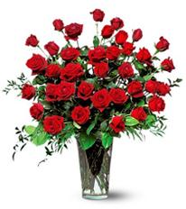 Three-Dozen-Red-Roses