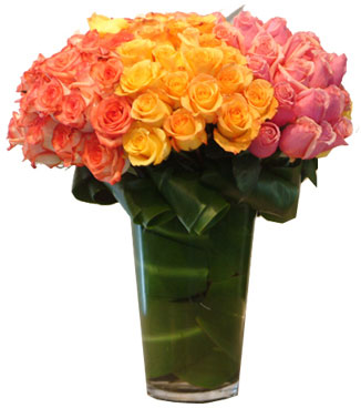 Vase with 100 Stems of Orange , Yellow & Pink Roses