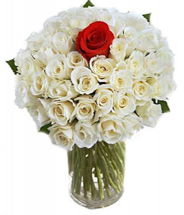 VASE WITH 40 WHITE & 1 RED ROSES
