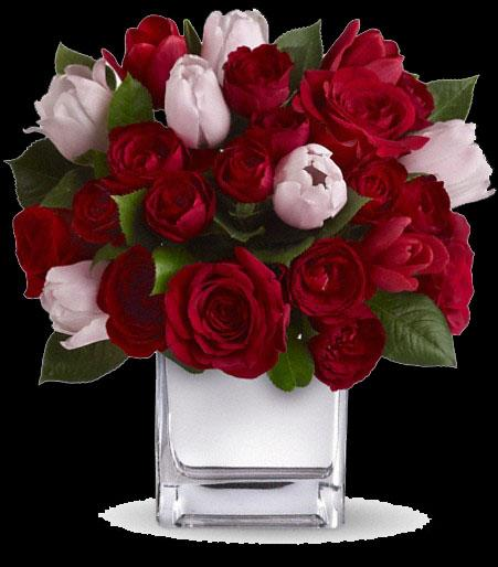 Red Roses & Red & Pink Tulips.