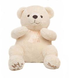 Beautiful White Teddy