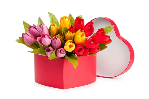 Tulips in heart box